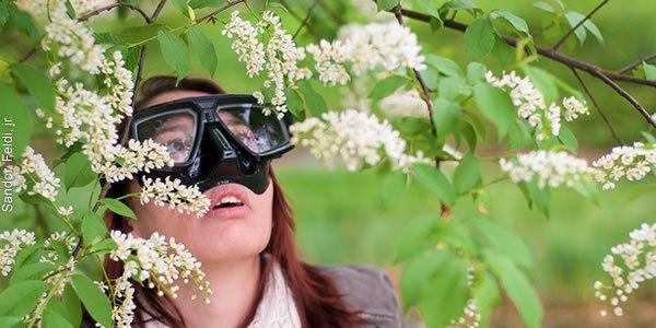 remedios naturales contra las alergias