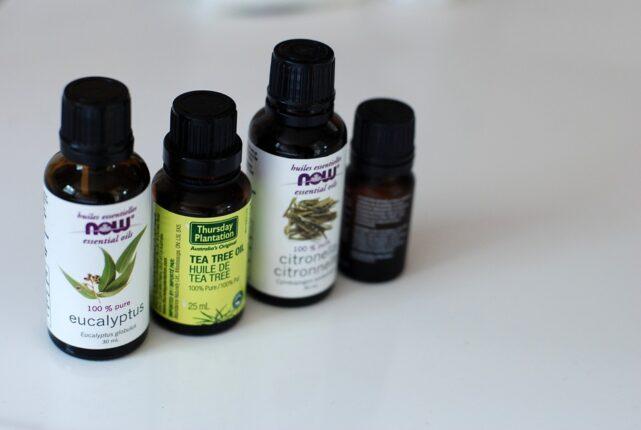 aceite-de-eucalipto-contra-la-bronquitis