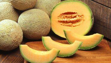 propiedades y beneficios melon para la salud